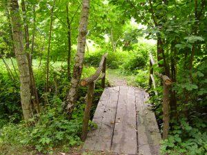 Do Szałasu prowadzi nas leśna kładka